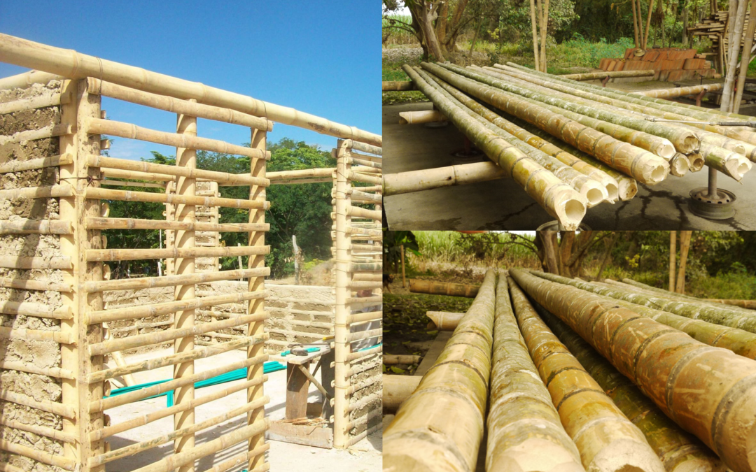 Bambú, ¿material cuasi perfecto?