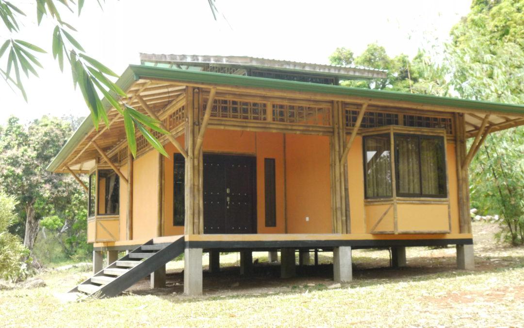 El bambú y la vivienda urbana