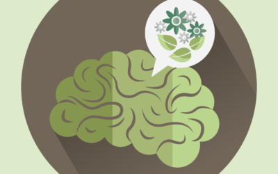 El dilema: Sistema o sostenibilidad