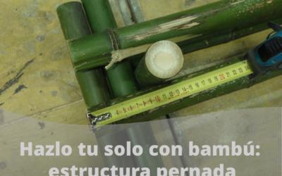 Tu pórtico de bambú
