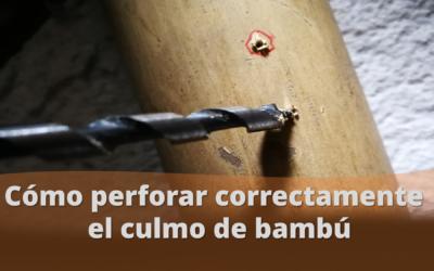 Perforaciones limpias en la estructura de bambú