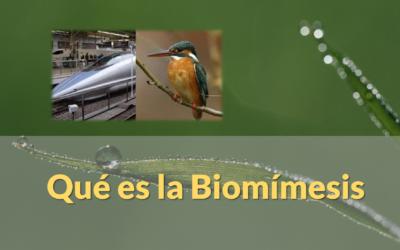Biomímesis