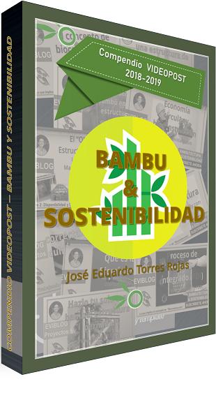 Ebook bambú y sostenibilidad